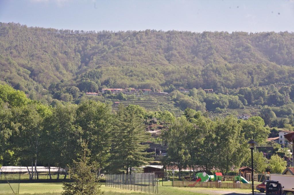 le Colline della Serra Morenica alle spalle del Palco Delle Colline